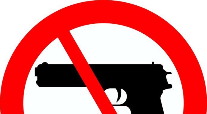 gun shootings in schools